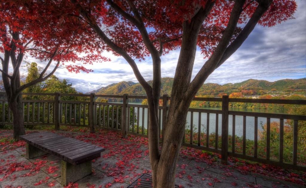 Mountain Trees View Bench Red Autumn Fence Pictures